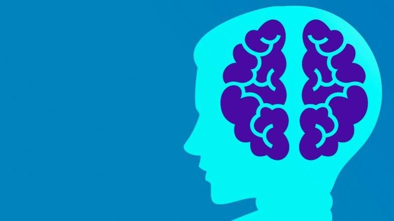 अल्झायमरचा धोका कमी करण्यासाठी फायदेशीर 5 सुपरफूड्स