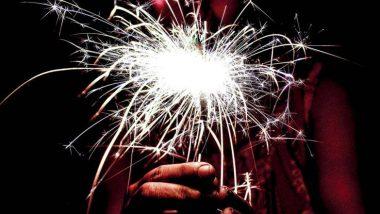 Diwali 2019: या दिवाळीत केवळ अनार, फुलबाजा याच फटाक्यांना फोडण्यास कायदेशीर परवानगी- सर्वोच्च न्यायालय