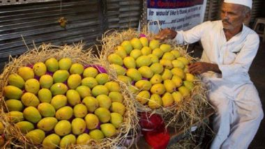 पुण्यात हापुस आंब्यांची एन्ट्री,  बाजारात 25 हजारांना विकली जातेय पेटी