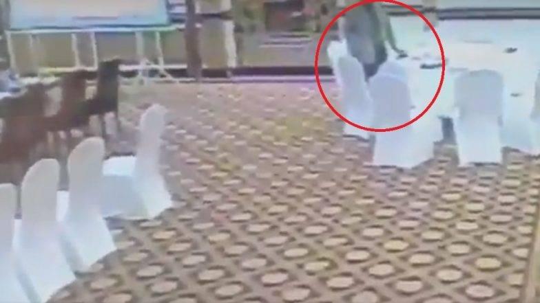 पाकिस्तानचा वरिष्ठ अधिकारी निघाला पाकीटचोर; चक्क कुवैतच्या राजदूताच्या पाकिटावर मारला डल्ला (व्हिडीओ)