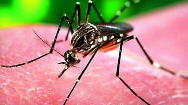 Zika Virus: कोरोनानंतर देशासमोर आता झिका व्हायरसचे संकट, आतापर्यंत 21 जणांना संसर्ग