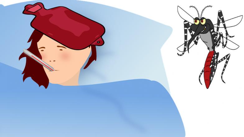 तापाशिवायही बळावतोय 'डेंग्यू' , AIIMS च्या डॉक्टरांचा खुलासा , या लक्षणांनी ओळखा तापाशिवाय वाढणार्या डेंग्यूचा धोका