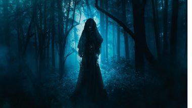 झाडावर पाहिले तरुणीचे भूत ; गावकऱ्यांची उडाली झोप