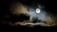 'कोजागरी पौर्णिमे' निमित्त पुण्यातील ही महापालिकेची 31 उद्याने रात्री बारापर्यंत राहणार खुली