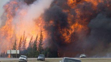 कॅलिफोर्निया जंगलाच्या आगीत 25 जणांचा मृत्यु; हजारो लोकांचे स्थलांतर