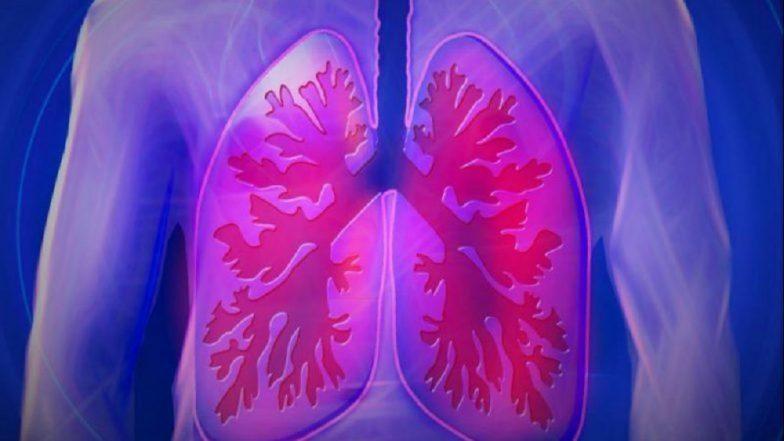 Lung Cancer Awareness Month : 'ही' लक्षणे देतात फुफ्फुसाच्या कॅन्सरचा संकेत !
