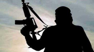 कश्मीरमध्ये दहशतवाद्यांकडून ग्रेनेड हल्ला; ट्राफीक पोलीस, पत्रकारासह अनेकजण जखमी