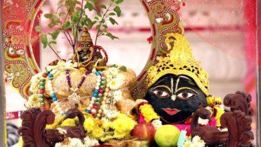 Tulsi Vivah 2019 Mangalashtak: तुलसी विवाह शुभ मुहूर्त, मंगलाष्टक ते पूजा विधी; जाणून घ्या कार्तिकी द्वादशीच्या मुहूर्तावर कसं लावाल तुळशीचं लग्न?