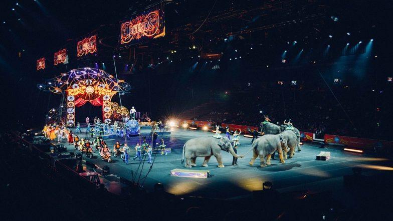 Circus मध्ये प्राण्यांना खेळवण्यास बंदी- Central Government चा निर्णय