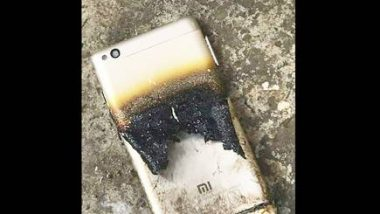 मोबाईलचा स्फोट झाल्याने शेतकरी जखमी