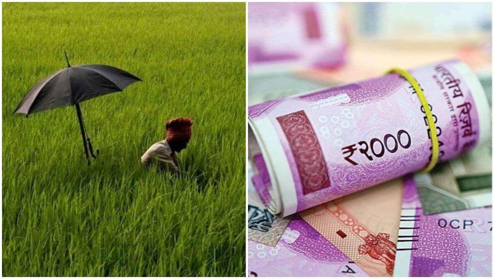 शेतकरी कर्जमाफी: सरकारी तिजोरीवर किती पडेल भार? घ्या जाणून सविस्तर
