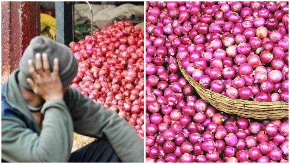 केंद्र सरकार करणार 2000 टन कांद्याची आयात; लासलगाव बाजारातील तुटवडा भरून काढण्यासाठी नवा मार्ग