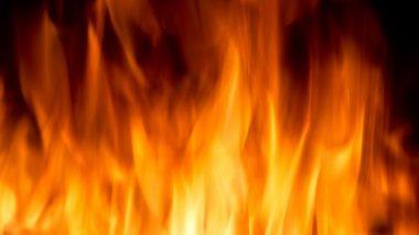 कांदिवली: कापड गोदामाला भीषण आग; 4 जणांचा मृत्यू