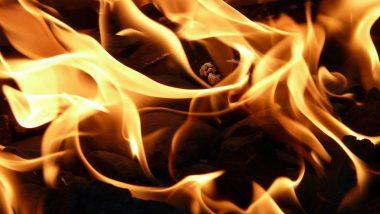 ठाण्यातील चरई परिसरात आग; कोणतीही जीवित हानी नाही