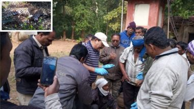 गोंदिया : पंजे कापलेल्या अवस्थेत सापडल बिबट्याचं मृत शरीर, तस्करीतून हत्या झाल्याचा अंदाज
