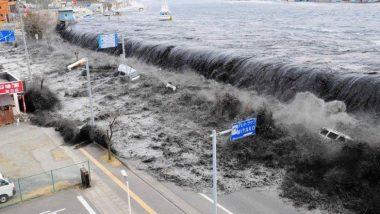 Indonesia मध्ये ज्वालामुखीच्या उद्रेकानंतर त्सुनामी, 62 जणांचा मृत्यू तर 600 हुन अधिक जखमी