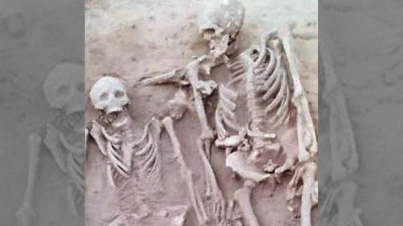 पहिल्यांदा हरयाणा येथे सापडले हडप्पाकालीन प्रेमी युगलाचे सापळे