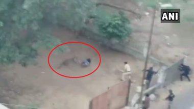 चित्तथरारक व्हिडिओ: बिबट्याचा चार जणांवर हल्ला, नाशिक येथील सावरकरनगर धोका टळला तरीही भीतीच्या छायेत