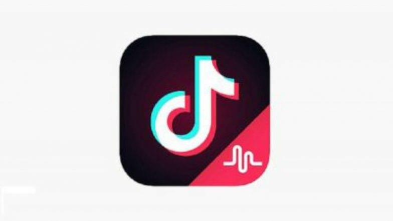 TikTok, UC Browser, Beauty Plus सारखी Apps वापरत असाल तर व्हा सावध; विकली जात आहे तुमची खासगी माहिती