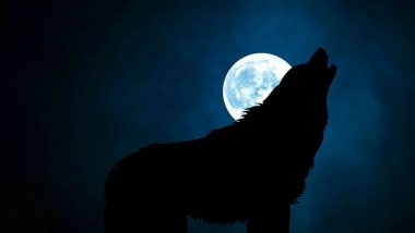 Super Pink Moon Update: येत्या 27 एप्रिलला आकाशात पाहायला 'सुपर पिंक मून' अद्भूत नजारा, आज येणार चंद्र पृथ्वीच्या जवळ