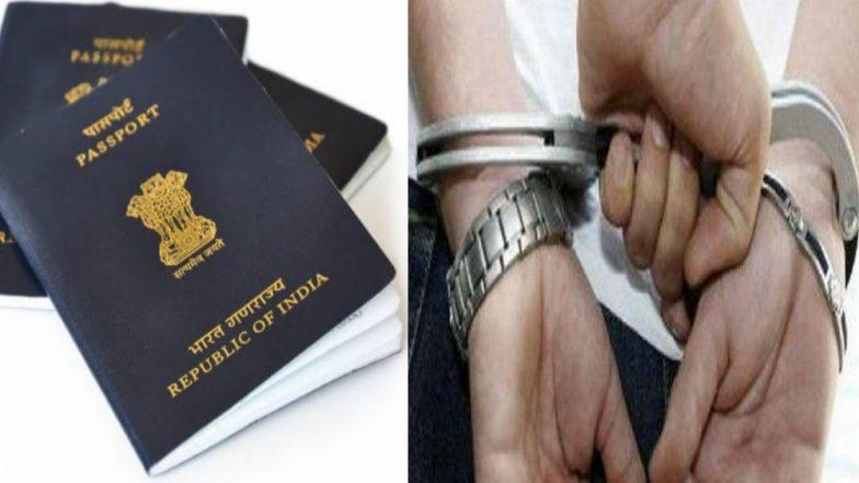 Immigration नियमांचे उल्लंघन केल्याप्रकरणी अमेरिकेत 600 भारतीय विद्यार्थी ताब्यात