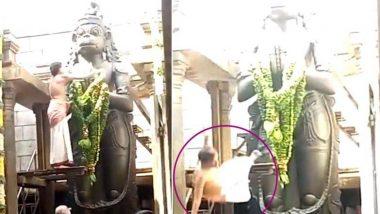 तामिळनाडू :  15 फूट उंचीच्या मूर्तीची पूजा करताना पाय घसरून कोसळला पुजारी, दुर्देवी मृत्यू (Video)