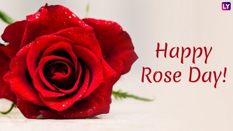 Happy Rose Day 2019: हॅपी रोझ डे' च्या शुभेच्छा देण्यासाठी खास मराठी Facebook, WhatsApp Status, SMS, Greetings