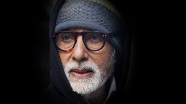Mumbai Metro ला अमिताभ बच्चन यांचा पाठिंबा, नेटकऱ्यांनी सोशल मीडियात दर्शवला विरोध