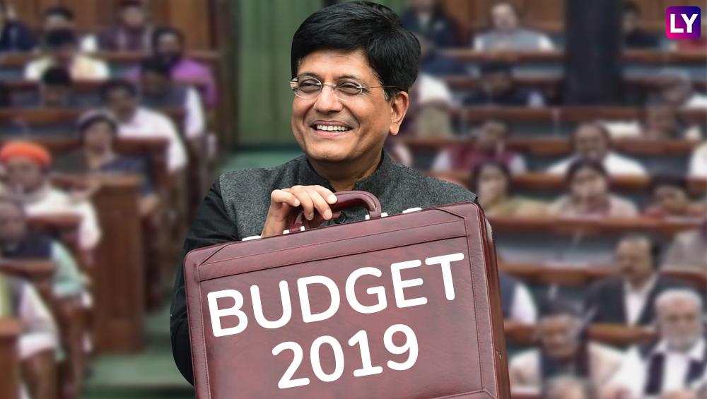 Budget 2019: मोदी सरकारच्या अर्थसंकल्पातील काही महत्वाच्या घोषणा; शेतकरी, नोकरदारांना दिलासा
