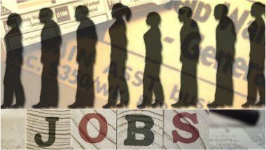 राज्य सरकारकडून मेगाभरती: 4 हजार जागा 8 लाख अर्ज; महाराष्ट्रात नोकरी, बेकारीचे धक्कादायक वास्तव