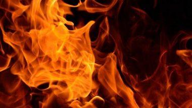 मुंबई: चेंंबुर नाका परिसरात झोपडपट्टीला आग; जीवितहानी नाही (Watch Video)