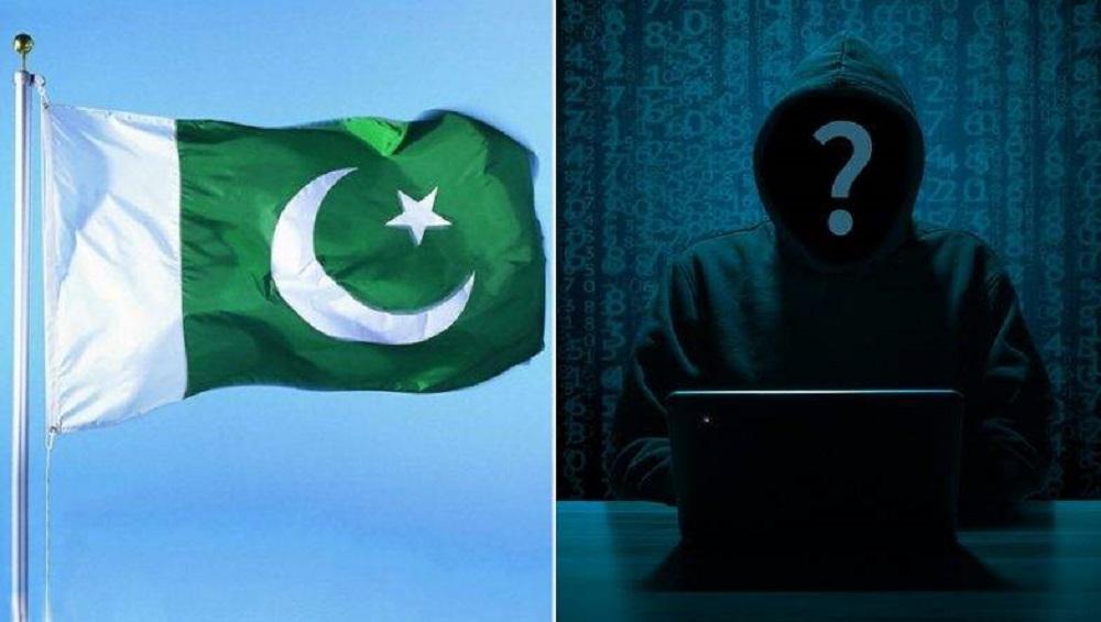 Pulwama Terror Attack: भारताचा पाकिस्तानवर सायबर हल्ला; 200 हुन अधिक वेबसाईट्स हॅक