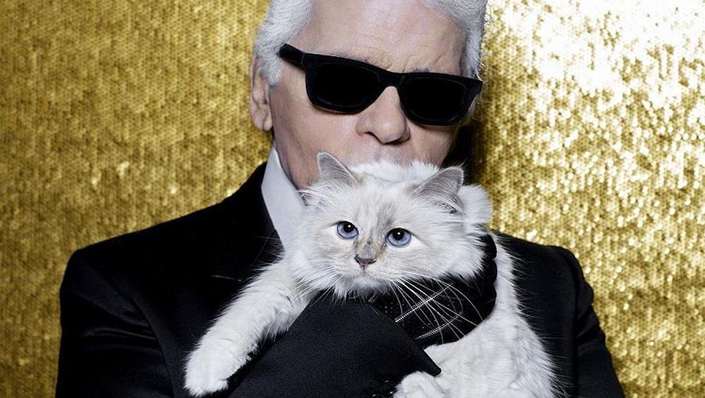 मांजर होणार Karl Lagerfeld च्या तब्बल 14 हजार कोटींच्या मालमत्तेची वारस; ठरणार जगातील सर्वात श्रीमंत पाळीव प्राणी