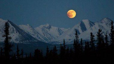 Super Snow Moon 2019: आज होणार यंदाच्या वर्षातील सगळ्यात मोठ्या चंद्राचं दर्शन, इथे पहा भारतातील सुपरमूनचं Live Streaming!