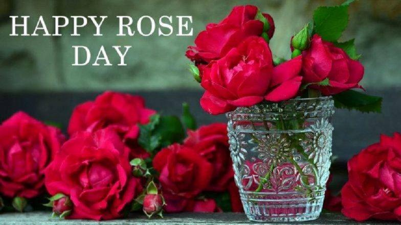 Happy Rose Day 2019: 'व्हेलेंटाईन वीक'ची सुरुवात Rose Day ने का होते?