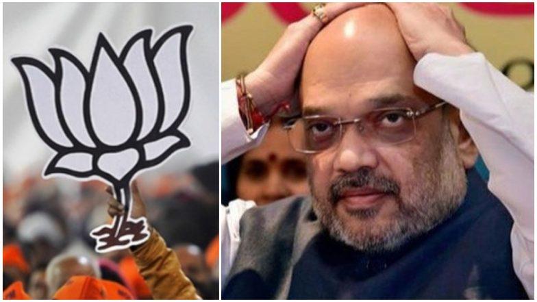 Lok Sabha Elections 2019: भाजपला मोठा धक्का; 2 मंत्री, 12 आमदार यांच्यासह 15 नेत्यांनी सोडला पक्ष