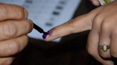 Lok Sabha Election 2019: व्हीव्हीपॅट यंत्र, APP द्वारा तक्रार, मतदार संख्येत वाढ - पहा लोकसभा निवडणूक 2019 ची '8' वैशिष्ट्य काय?