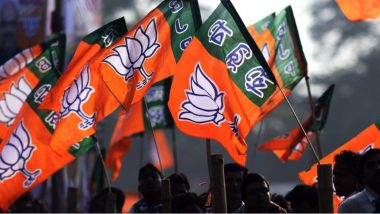 Lok Sabha Elections 2019: भाजप पक्षातील 'या' 5 महत्वाच्या नेत्यांबद्दल जाणून घ्या