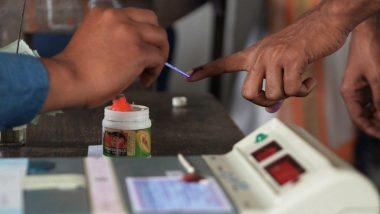 Lok Sabha Elections 2019: लोकसभा निवडणुकीचा निकाल 23 मे ऐवजी सहा दिवसानंतर लावणार? निवडणुक आयोगाची माहिती