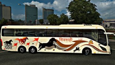 शिवशाही बस उलटली, दोन ठार, इतर प्रवासी जखमी; नाशिक-मुंबई-आग्रा हायवेवर अपघात