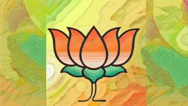 Lok Sabha Election 2019: भाजप नेतृत्वाचा छत्तीसगड राज्यात मोठा निर्णय; सर्व विद्यमान खासदारांचे तिकीट कपणार