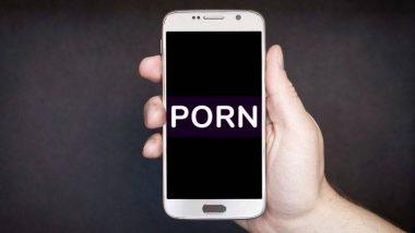 विमानात पॉर्न क्लिप पाहत असल्याप्रकरणी उद्योगपती विरुद्ध महिलेची क्रु सदस्यांकडे तक्रार, आरोपीला अटक