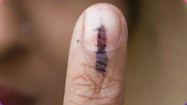 Lok Sabha Elections 2019: गडचिरोली-चिमुर लोकसभा मतदारसंघात आज फेरमतदान