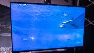 Sony Bravia 32W830 Smart TV भारतात लाँच, यामध्ये मिळणार 'ही' खास वैशिष्ट्ये