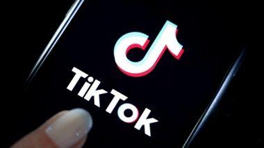 दिल्ली: TikTok स्टार आत्महत्या करण्यासाठी 18 तास हॉटेलच्या छतावर, 50 लाख युजर्स करतात फॉलो