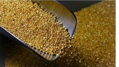 नागपूर विमानतळावर शरीरातून सोन्याची पेस्ट तस्करी करत असलेल्या दोघांना अटक