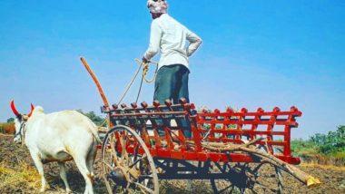 Bhendwal Bhavishyavani 2019: 300 वर्ष जुन्या 'भेंडवळ भविष्यवाणी' बद्दल इंटरेस्टिंग गोष्टी