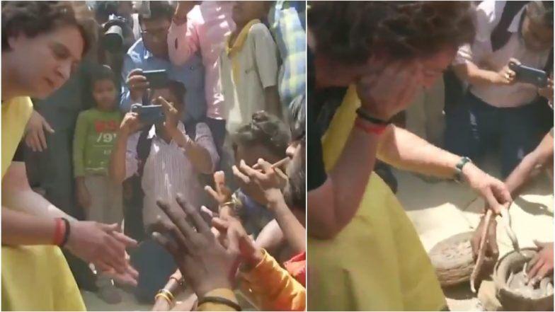 उत्तर प्रदेश: रायबरेली येथे प्रचारादरम्यान प्रियंका गांधी सापाशी खेळताना दिसल्या; पहा Video