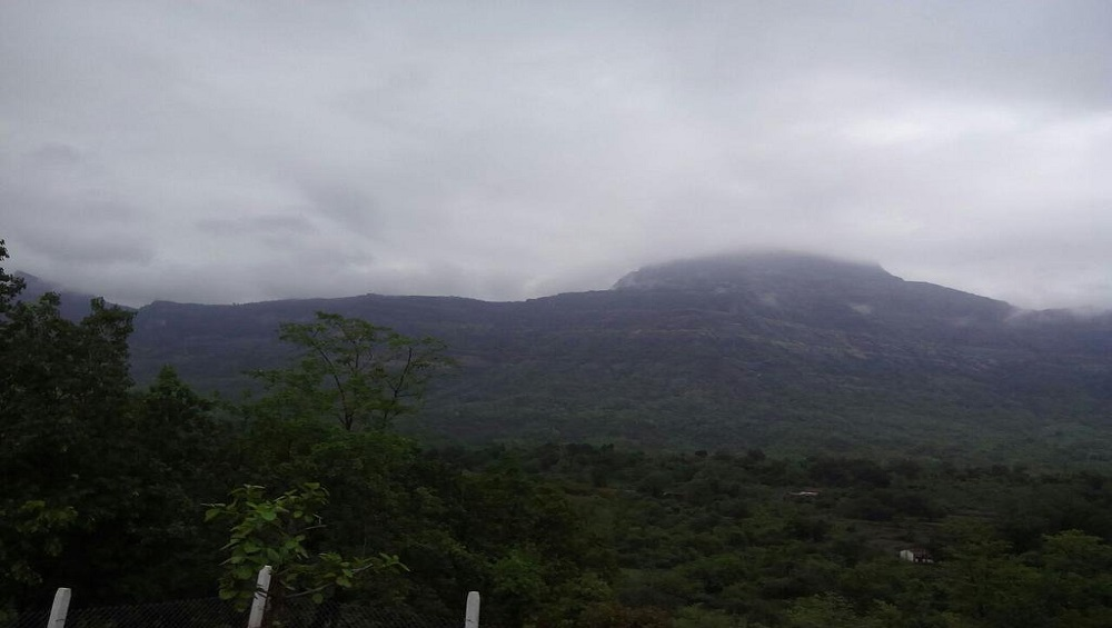 Maharashtra Monsoon 2020: पुढील 4,5 दिवसात मुंबई, ठाणे, नवी मुंबई, कोकणात मुसळधार ते अतीमुसळधार पावसाची शक्यता; हवामान विभागाची माहिती