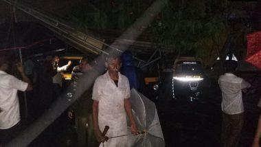 अंबरनाथ: मुसळधार पावसामुळे रिक्षा स्टँन्डवर झाड कोसळले, एका चालकाचा मृत्यू तर 3 जखमी